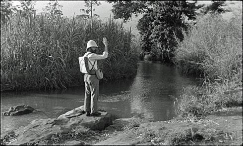O caçador e o crocodilo