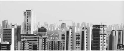Recife e sua selva de pedra