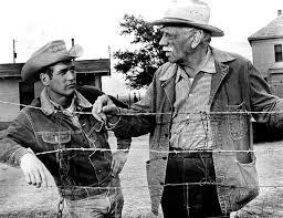 Paul Newman e o veterano Melvyn Douglas.